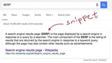 80 Persen Pencarian Google Berdasarkan Snippet?